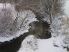 Rock Creek Jan 2011 from Baughmans Lane