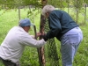 Liz and Lynn sheltering a birch fall 2011